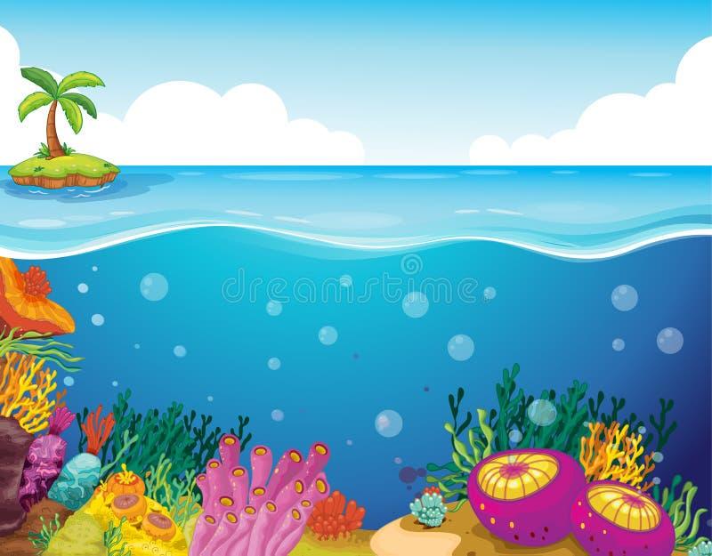 Palme und Koralle lizenzfreie abbildung