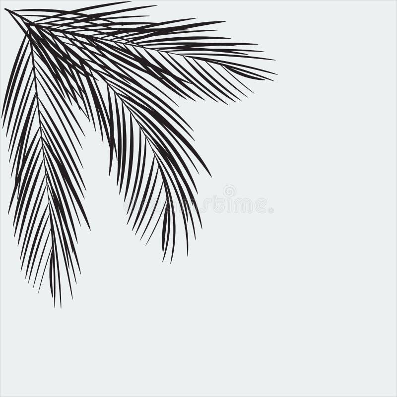 Palme verlässt Schattenbild lizenzfreie abbildung