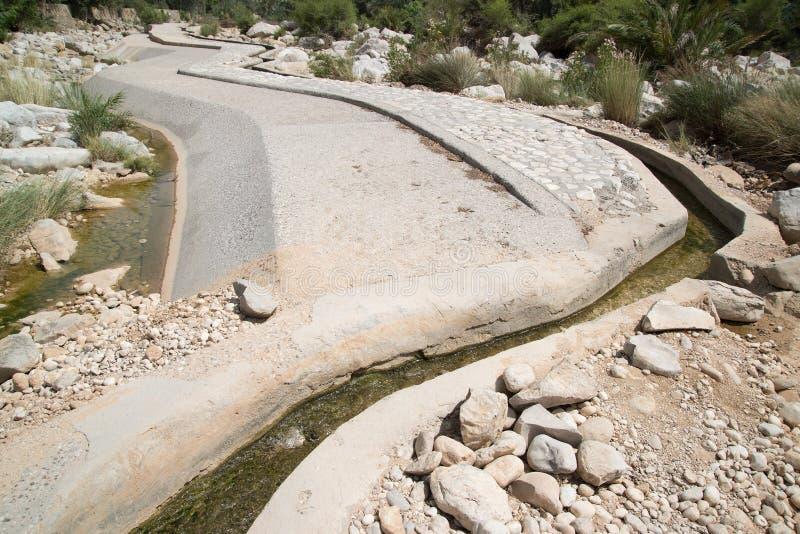 Palme in Wadi Bani Khalid immagine stock libera da diritti