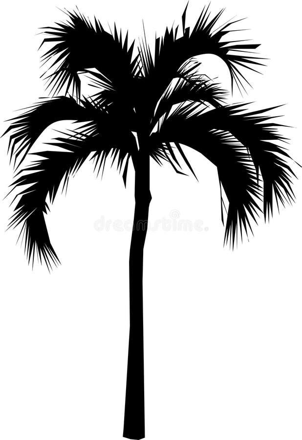 Palmeira ilustração stock