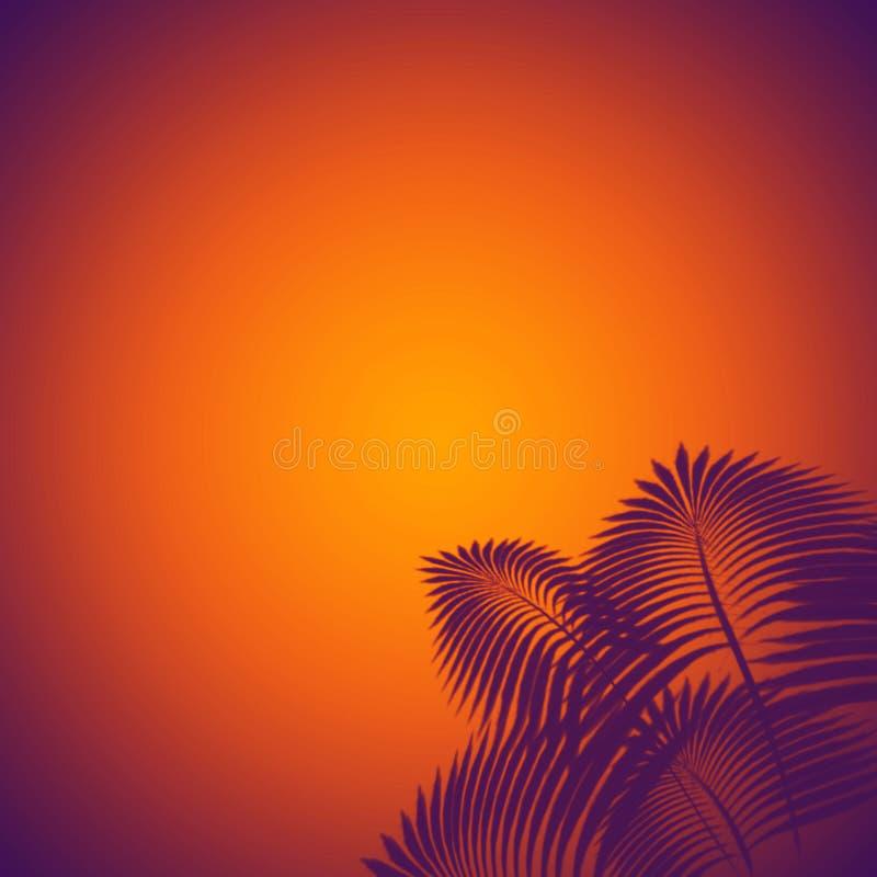 A palmeira azul elegante sae no fundo alaranjado gradual com ilustração do vetor