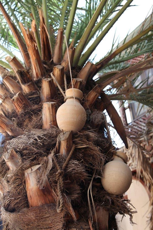 Palmeira com os frascos handcrafted de Nizwa Oman fotos de stock