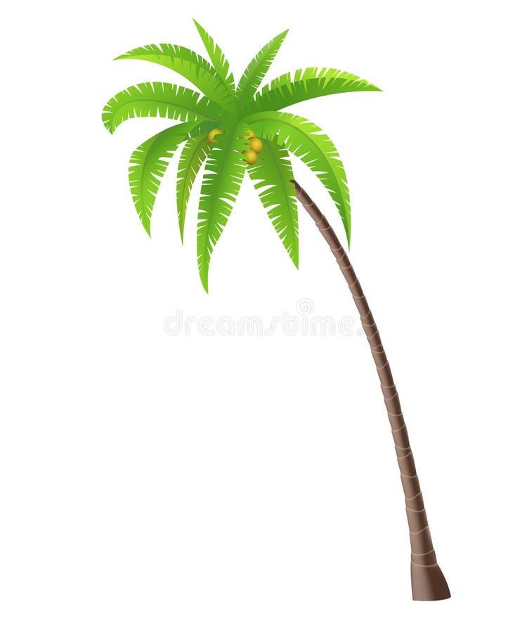Palmeira do coco ilustração royalty free