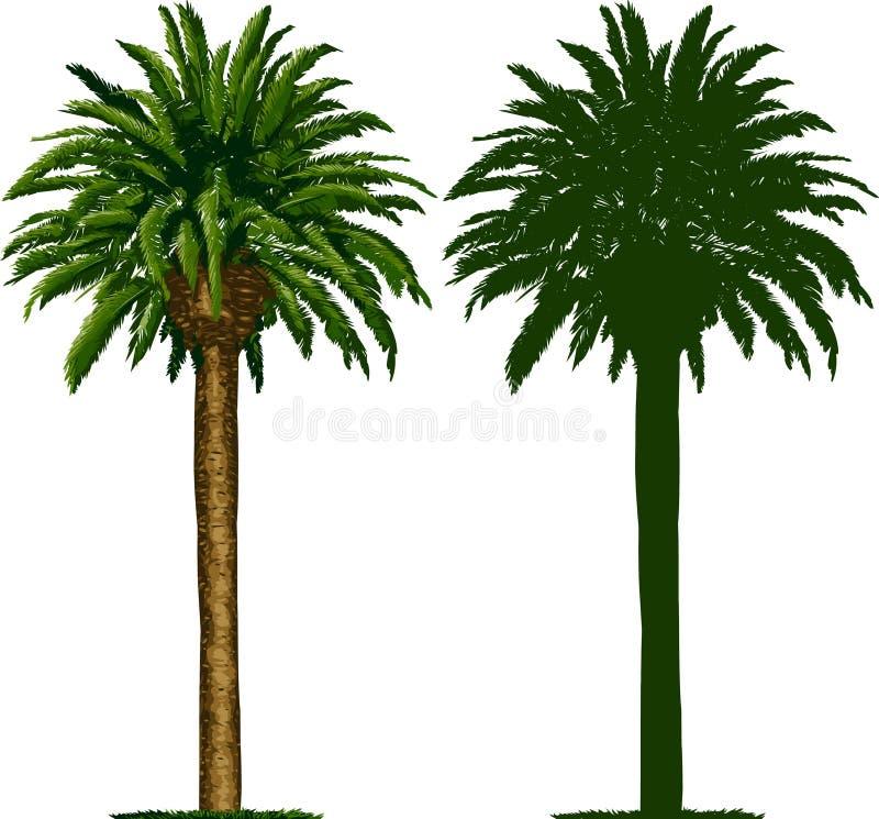 Palmeira e silhueta de Califórnia ilustração do vetor