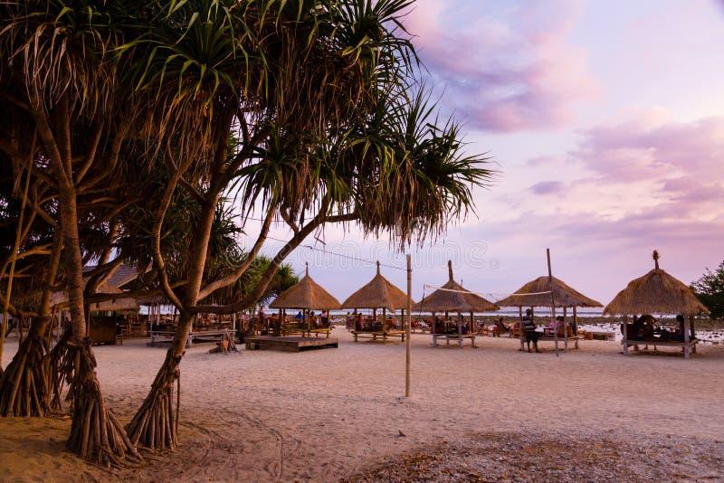 Palmeira tropical com por do sol fotografia de stock