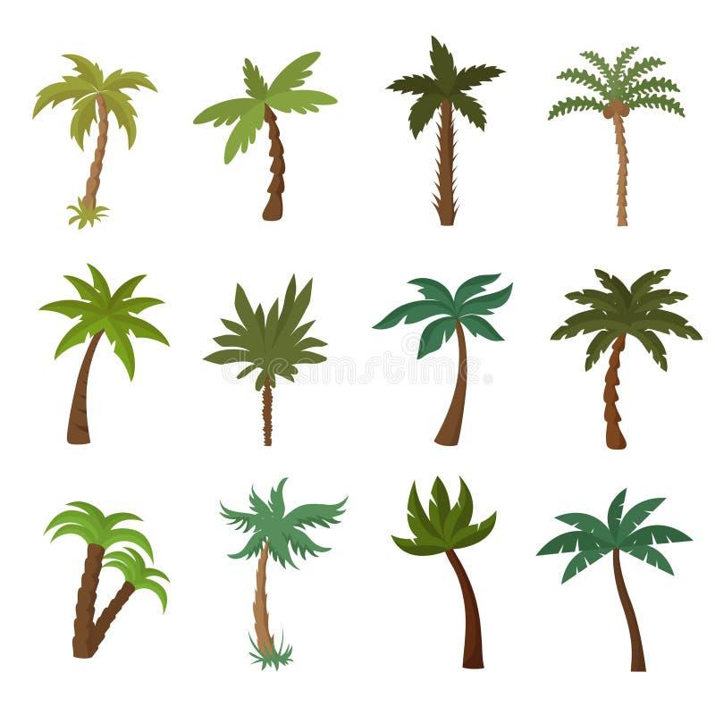 Palmeiras de Califórnia Grupo do vetor da planta tropical do verão ilustração stock