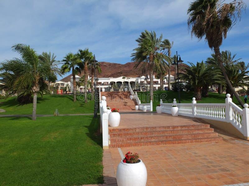 Palmeiras de Lanzarote, escadas de Teracotta ao hotel e vulcânico vermelhos fotografia de stock