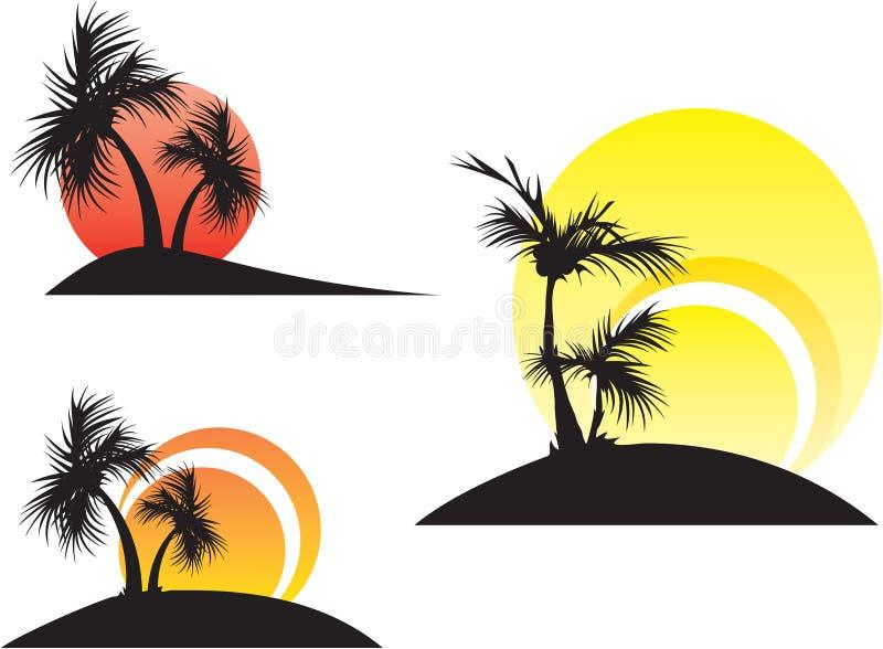 Palmeiras em um por do sol fotografia de stock