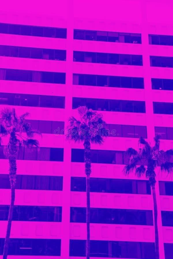 Palmeiras Los Angeles Inclina??o na moda de cores azuis, roxas e cor-de-rosa foto de stock royalty free