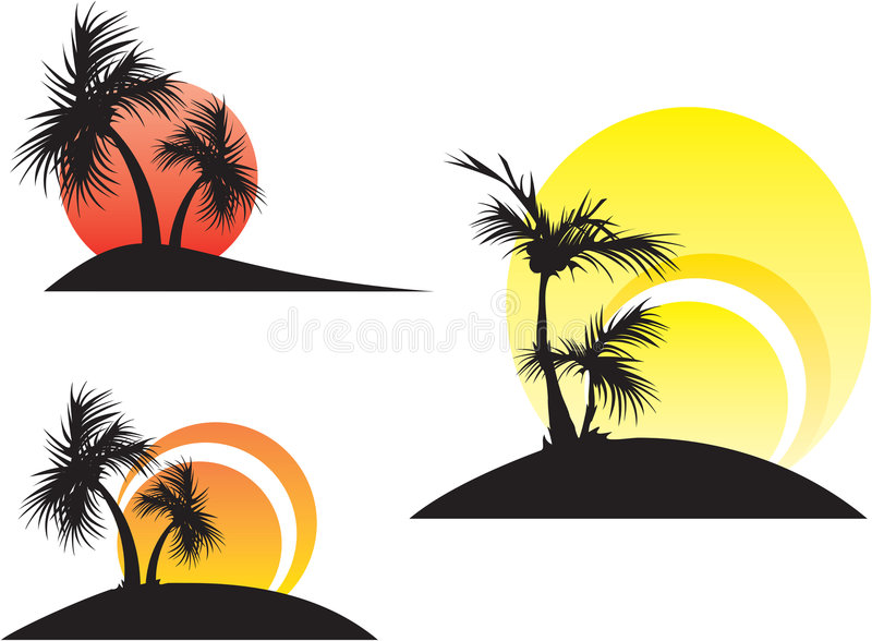Palmen auf einem Sonnenuntergang
