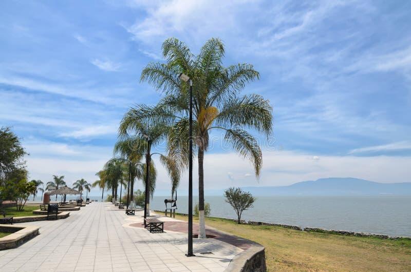 Palmen bij de bedekte dijk langs Chapala-meer royalty-vrije stock afbeeldingen
