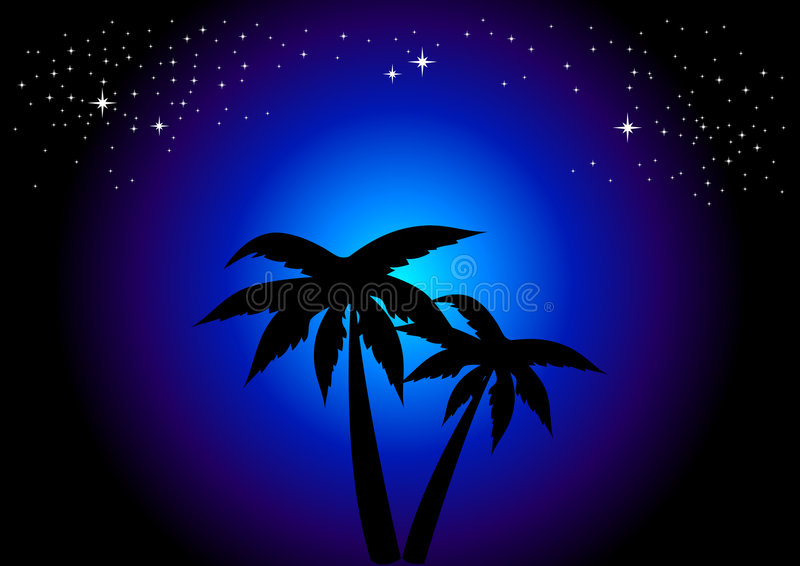Palmen bij Nacht royalty-vrije illustratie