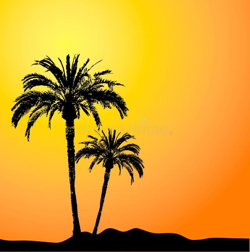 Palmen bij zonsondergang stock illustratie