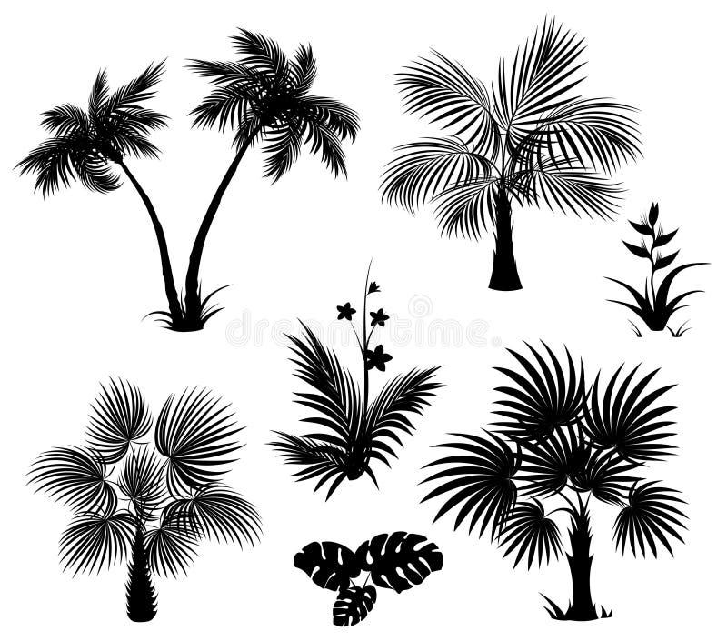 Palmen, Blumen und Blätter, schwarze Schattenbilder lizenzfreie abbildung