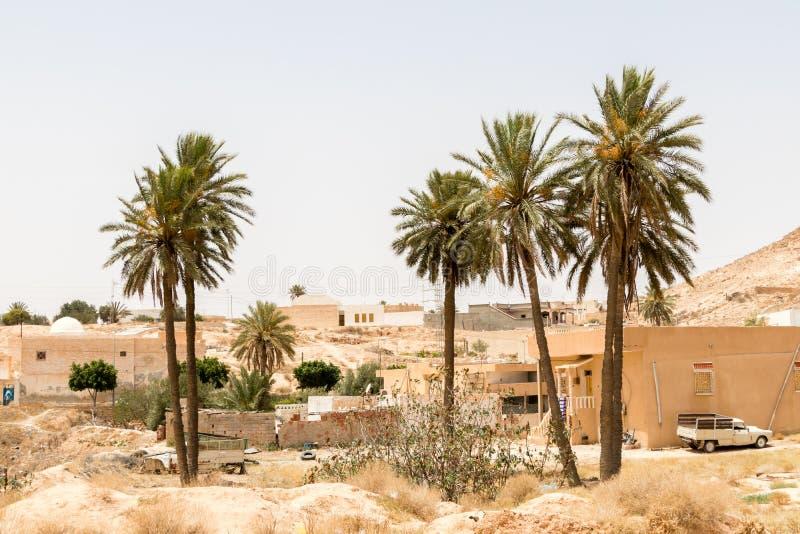 Palmen in de stad van Matmata, Tunesië, Afrika royalty-vrije stock afbeelding