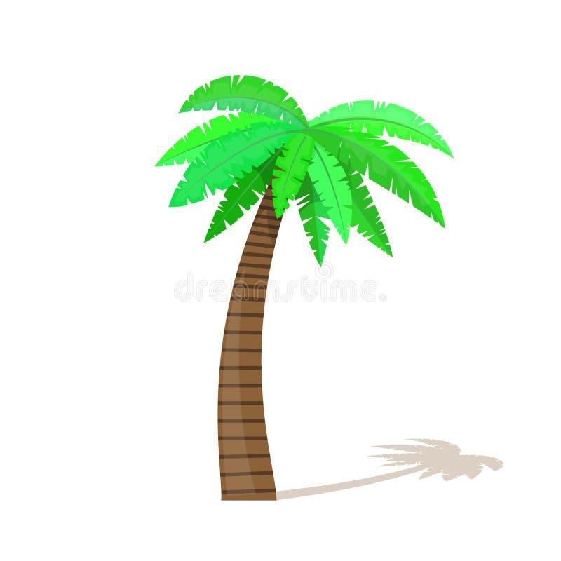 Palmen in der Karikaturart auf weißem Hintergrund lizenzfreie abbildung