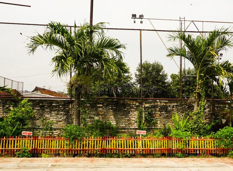 Palmen dichtbij een sportgebied met bakstenen murenfoto in Semarang Indonesië wordt genomen dat royalty-vrije stock afbeeldingen