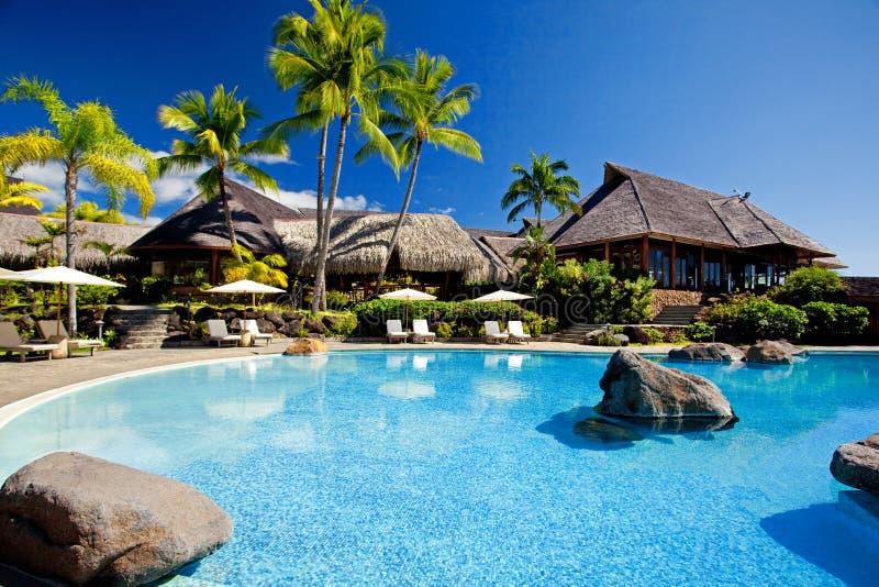 Palmen die over het overweldigen van hotelpool hangen royalty-vrije stock afbeeldingen