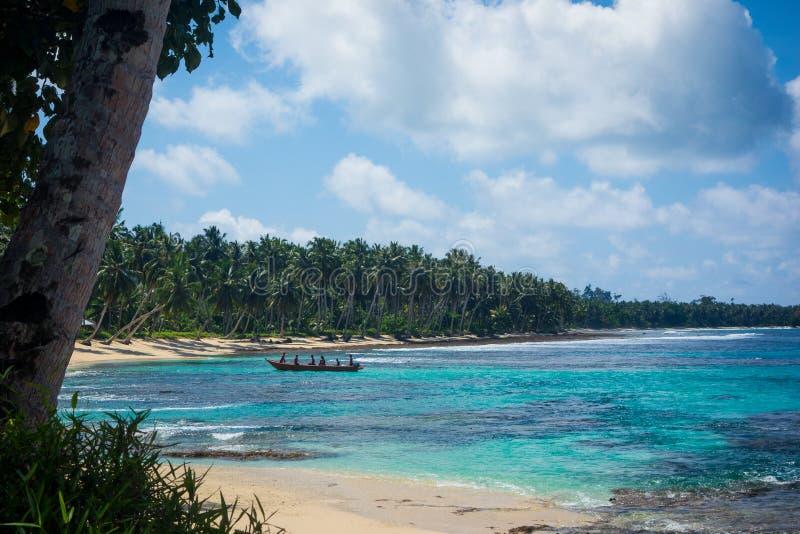 Palmen en blauwe oceaan royalty-vrije stock afbeeldingen