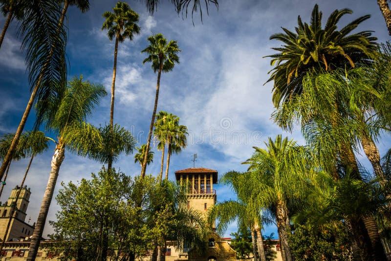 Palmen en de buitenkant van de Opdrachtherberg stock afbeeldingen