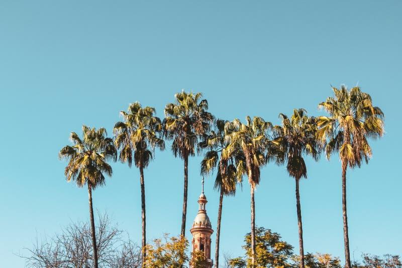 Palmen en een bovenkant van toren in Andalusia royalty-vrije stock foto's