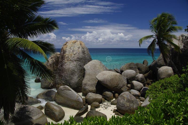 Palmen en granietrotsen bij strand, Seychellen royalty-vrije stock foto's