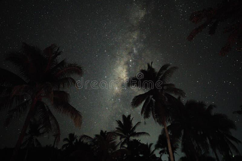 palmen en het milkyway overschot Siargao, Filippijnen royalty-vrije stock afbeelding