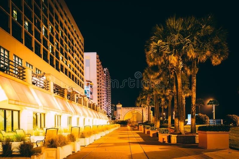 Palmen en hotels bij nacht, in Daytona Beach, Florida royalty-vrije stock foto