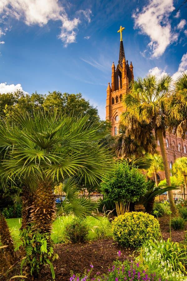 Palmen en Kathedraal van Heilige John Doopsgezind in Charleston royalty-vrije stock afbeelding