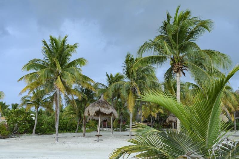 Palmen en palapas in wit zand op een Caraïbisch strand in Mexico stock fotografie