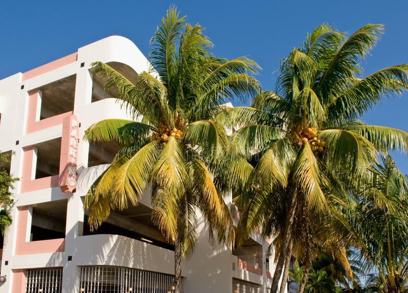 Palmen en parkerengarage stock foto's