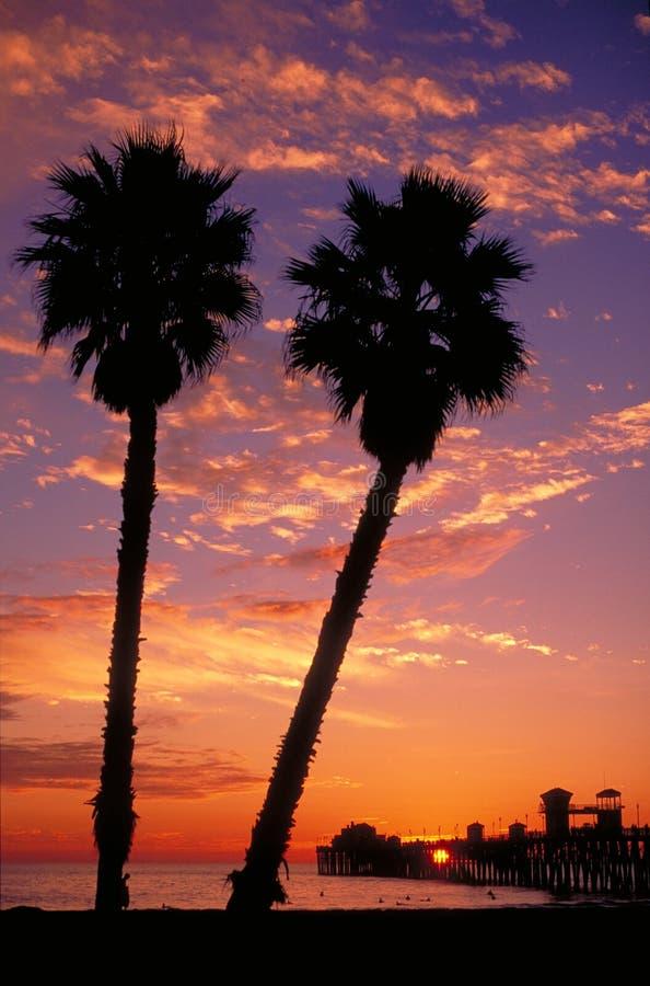 Palmen en Pijler bij Zonsondergang stock afbeeldingen