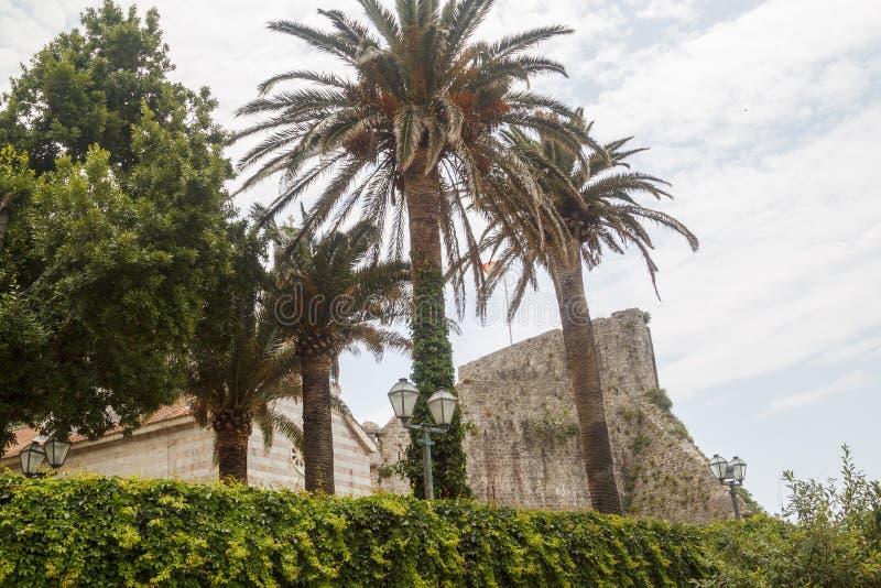 palmen en voorgevel van oude historische kerk in Oude stad Budva, Mon royalty-vrije stock fotografie