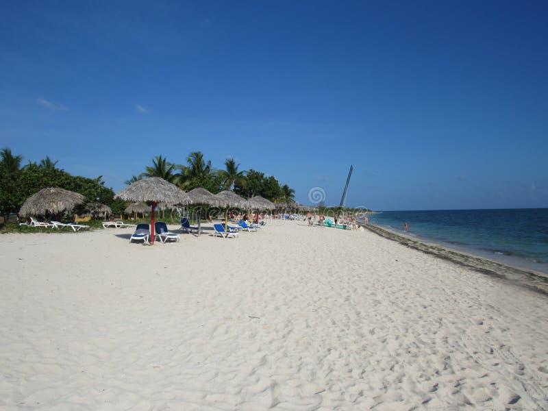 Palmen en wit zandig strand bij de zonsondergang in Caribbeans stock foto's