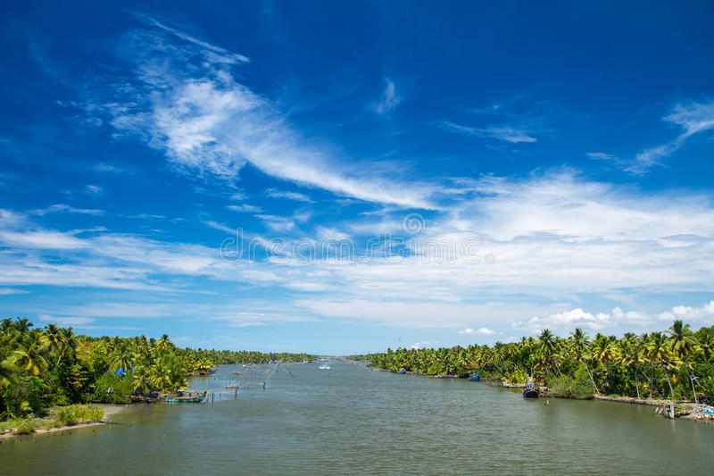 Palmen entlang Kanal von Kerala-Stauwassern lizenzfreie stockbilder