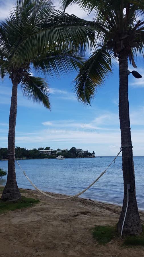 Palmen, hangmat, en boot in water en strand in Guanica, Puerto Rico stock afbeeldingen