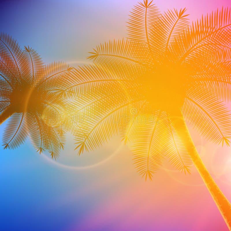 Palmen mit schönem Sonnenuntergang stock abbildung