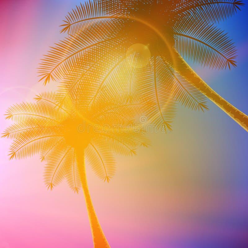 Palmen mit schönem Sonnenuntergang vektor abbildung