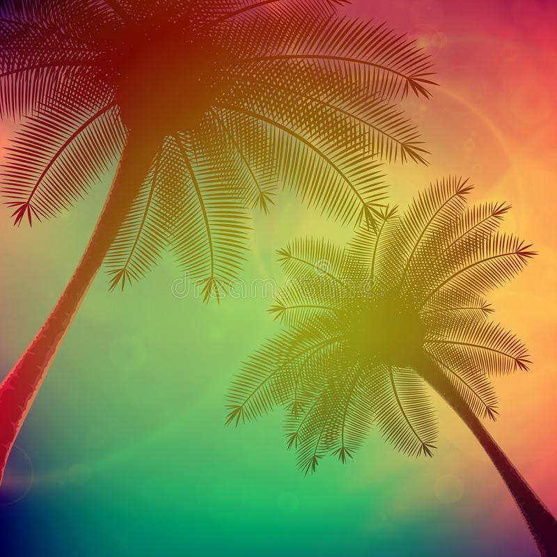 Palmen mit schönem Sonnenuntergang lizenzfreie abbildung
