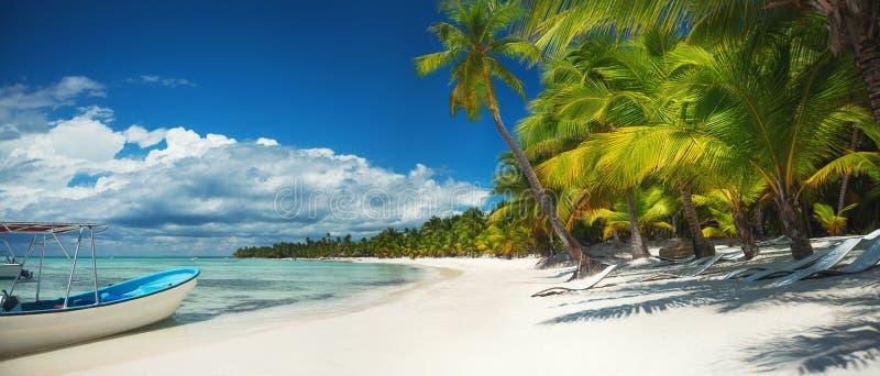 Palmen op het tropische strand, Dominicaanse Republiek Het Eiland van Saona stock afbeeldingen