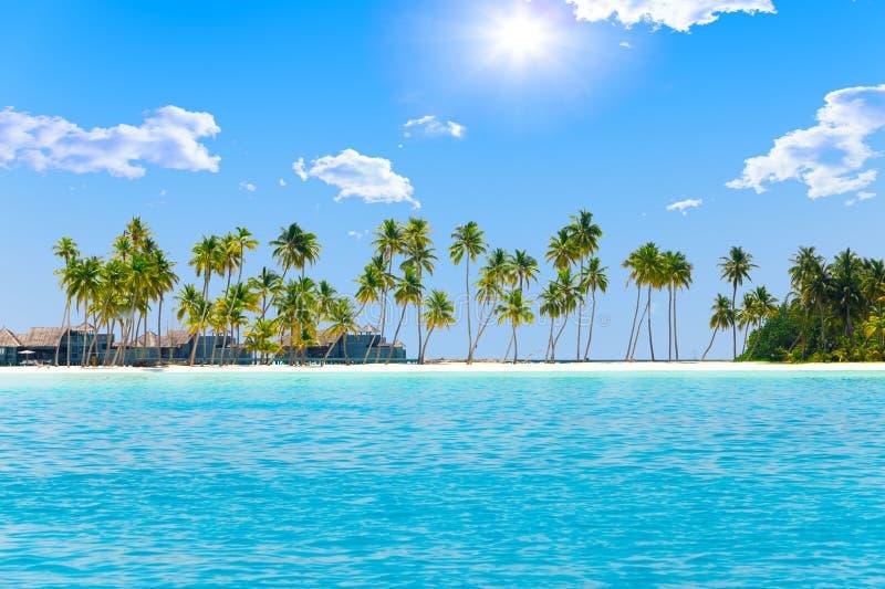 Palmen op tropisch eiland bij oceaan. De Maldiven royalty-vrije stock foto