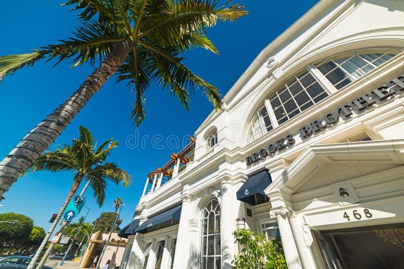 Palmen in Rodeoaandrijving stock foto