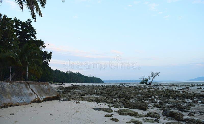 Palmen, Rotsen, en Hemel - Dawn bij Vijaynagar-Strand, Havelock-Eiland, van Andaman & Nicobar-Eilanden, India stock afbeeldingen
