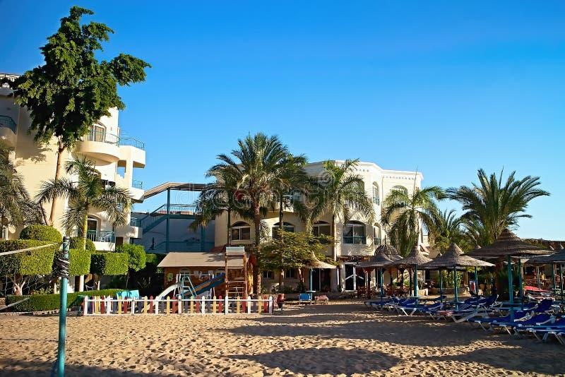Palmen Sunbeds und als Teil des Strandes Bella Vista-Strandurlaubsort bereitete sich für die ersten sonnigen Besucher vor ägyptis stockbild