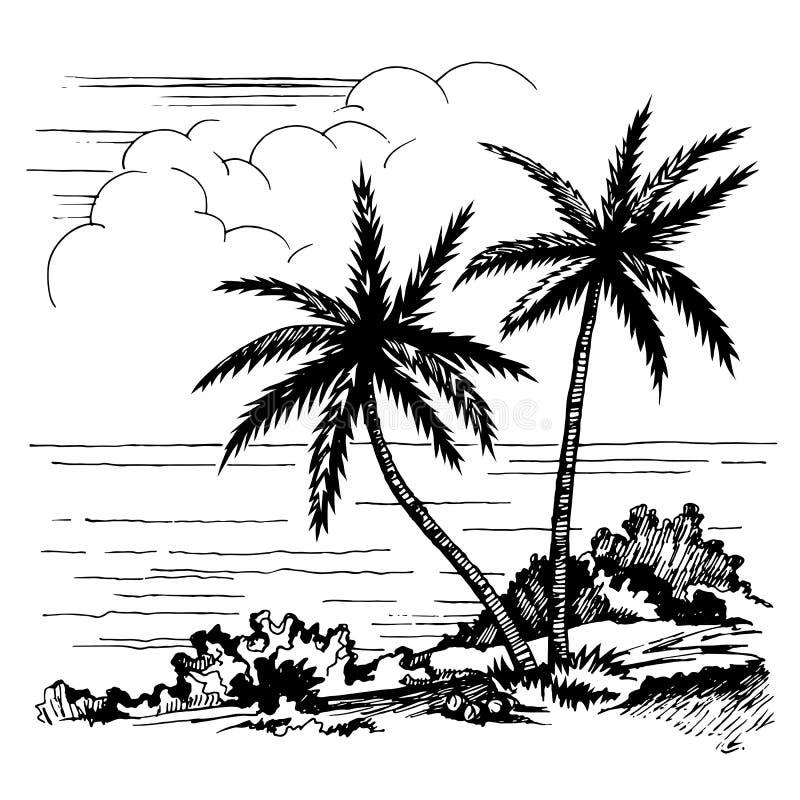 Palmen und die Seeskizze lizenzfreie abbildung
