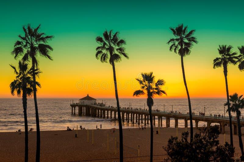 Palmen und Pier auf Manhattan Beach bei Sonnenuntergang in Kalifornien, Los Angeles lizenzfreie stockfotografie