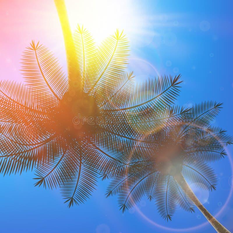 Palmen und Sonne im Himmel vektor abbildung