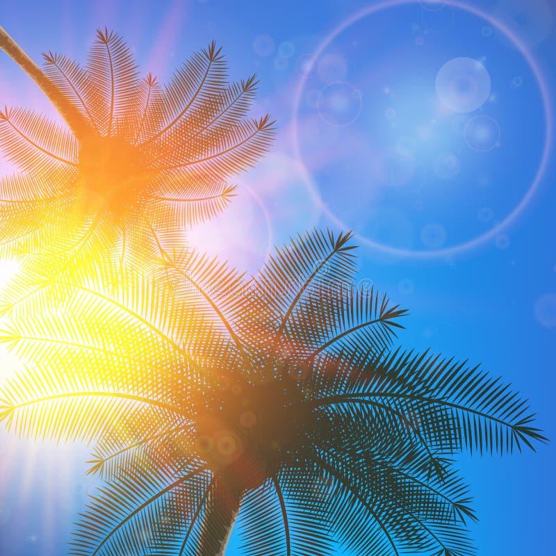 Palmen und Sonne im Himmel stock abbildung