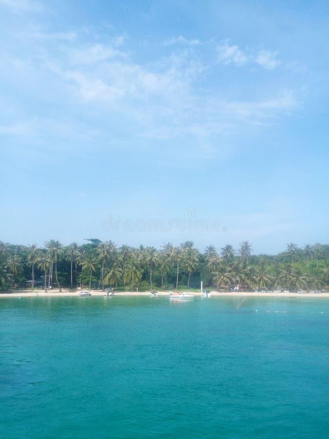 Palmen, wit zand, warme blauwe overzees stock foto's