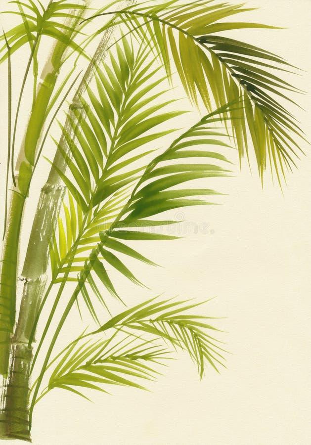 Palmenbambusaquarellmalerei lizenzfreie abbildung